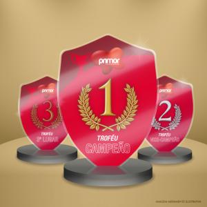 Kit Troféus 1º, 2º e 3º Lugar Acrílico  Impressão UV