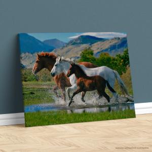 Quadro Canvas - CAVALARIA GALOPE Tecido Canvas Impresso Três Tamanhos   Estrutura em Madeira